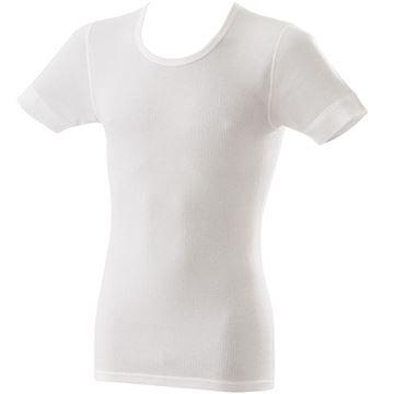Image de T-Shirt blanc Adamo